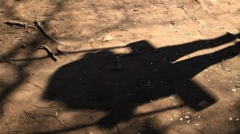 Moscow swing shadow